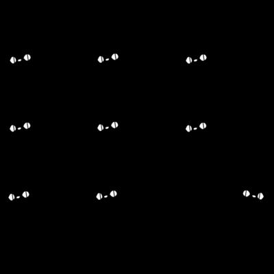 ひょっこり黒猫