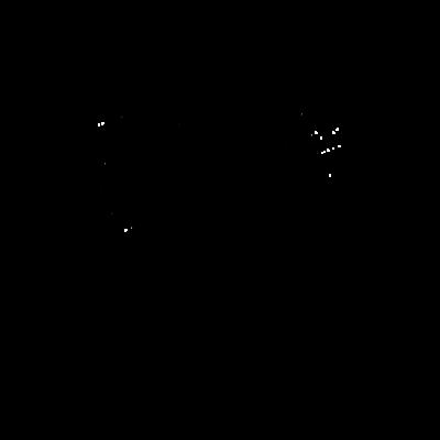 夜のクラゲ