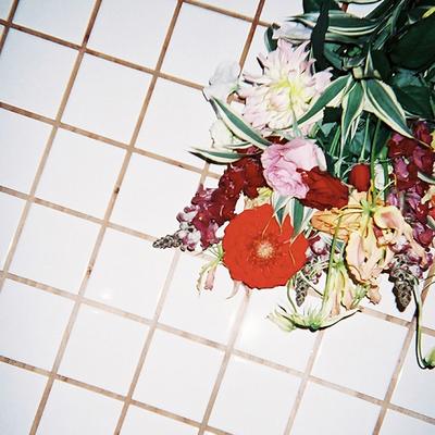 harucamera お花たち