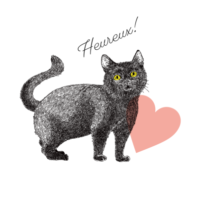 幸せの黒猫