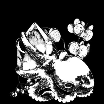 タコと水晶とヤマノイモ柄