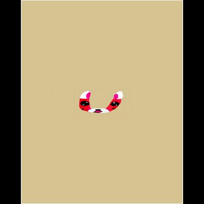 イニシャル頭文字文字絵「U」クリアマルチケース