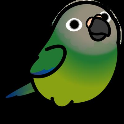Chubby Bird シモフリインコ