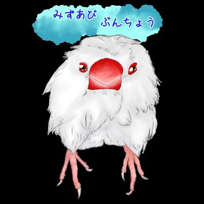 変身!水浴び白文鳥