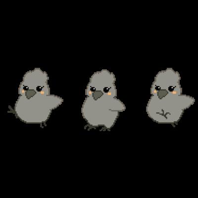 鳥(インコ、オウム等)