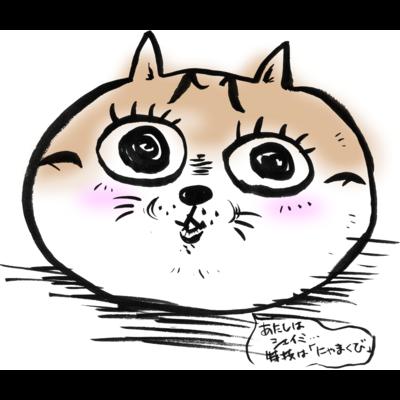 和美猫祭シェイミ嬢