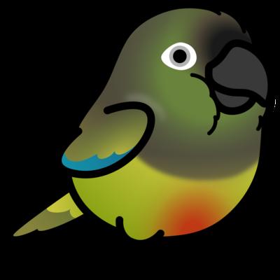 Chubby Bird イワインコ