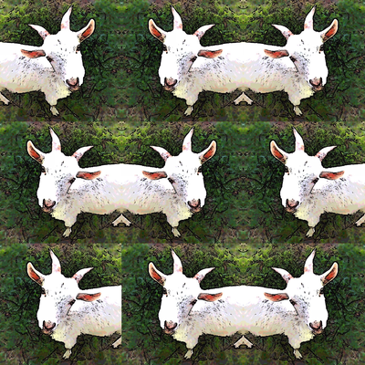 遊ぼ。山羊。and more...
