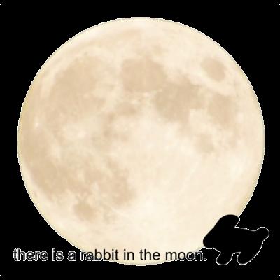 moon🌕お月様