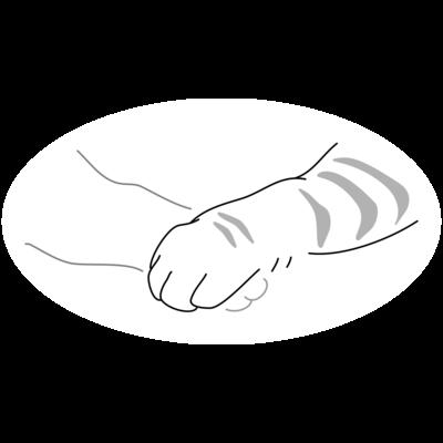 Shaking hands-Neko