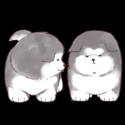 二匹のコロコロアラスカン・マラミュート子犬