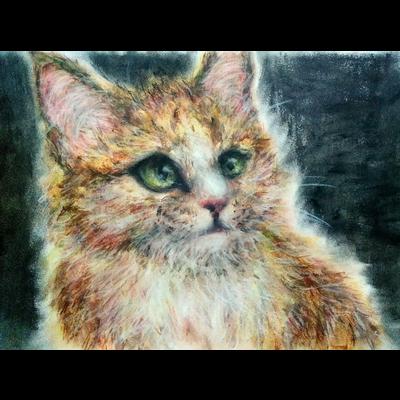 クレヨンかわいい子猫