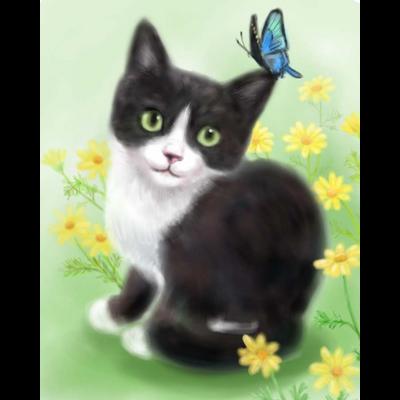 ~Dream~ハチワレ子猫と蝶々