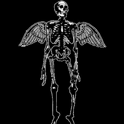 骸骨天使ちゃん