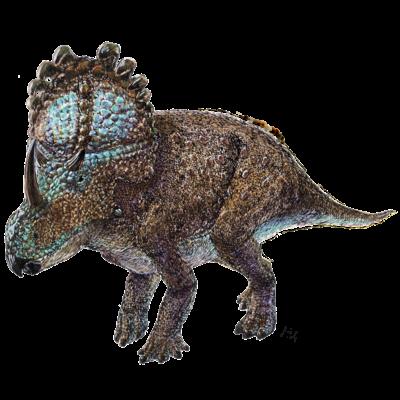 Sinoceratops(水彩)