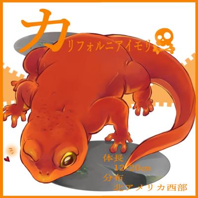 カタカナシリーズ「カ」行