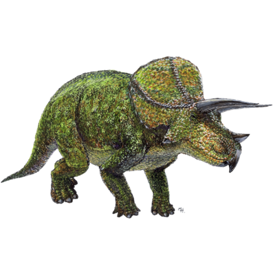 Triceratops(drawing)colorのオモイデ