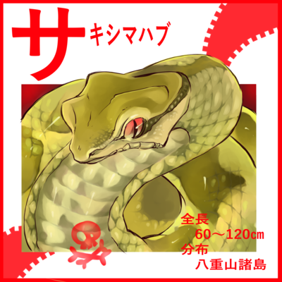 カタカナシリーズ「サ」行