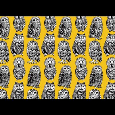 森のフクロウたち