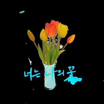 너는 나의 꽃キミは私の花