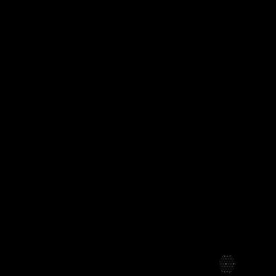 ALOHA ALOHA  吹き出しパイナップル 黒ロゴ 163