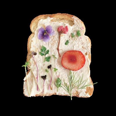 押し花トースト