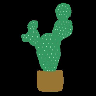 植物💚🌵🌿🌱