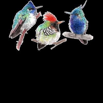 鳥 Birds