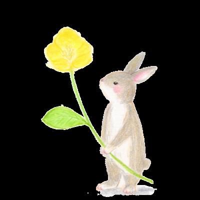うさぎと黄色いお花