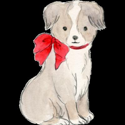 赤いリボンの犬