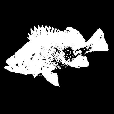 メバリスト専用~釣り人仕様
