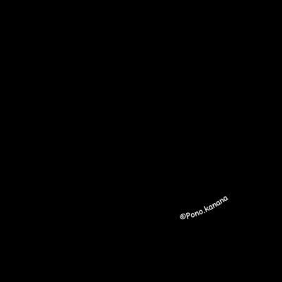 Ponoオリジナルロゴシリーズ