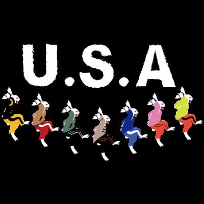 USA(うさ)ダンス