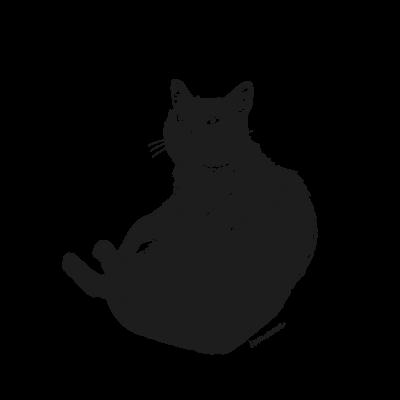 ぽっちゃり黒猫