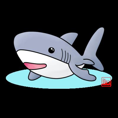 メジロザメ