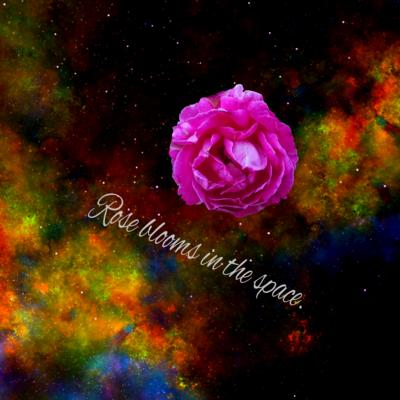 うちゅうのバラだ