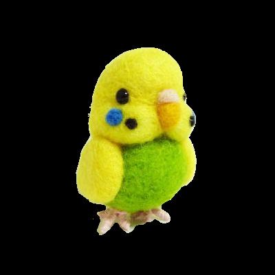 セキセイインコ黄緑