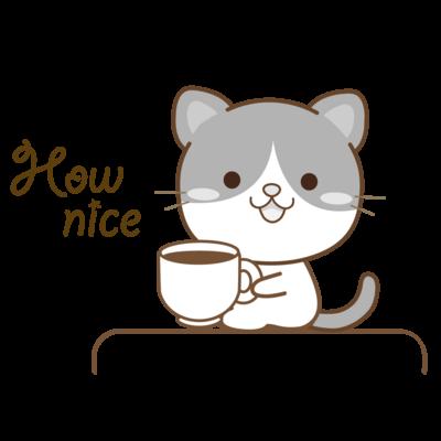 黒白猫のシンプルモノトーン
