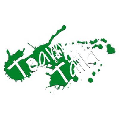 TEAM TAIKI_splash