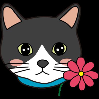 ハチワレ猫【しじみ】