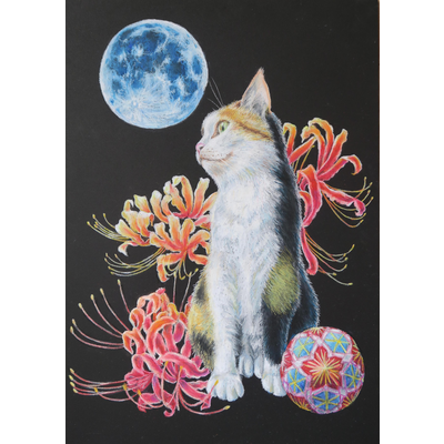 猫と曼珠沙華