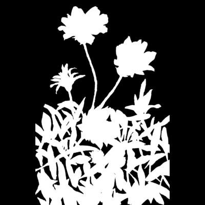 花咲く小径②黒