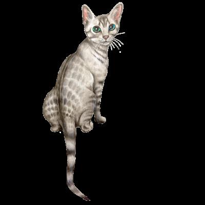猫 Neco
