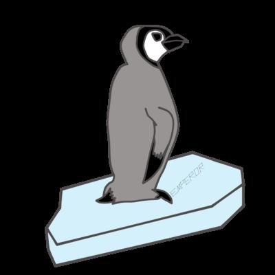 流氷ペンギン。