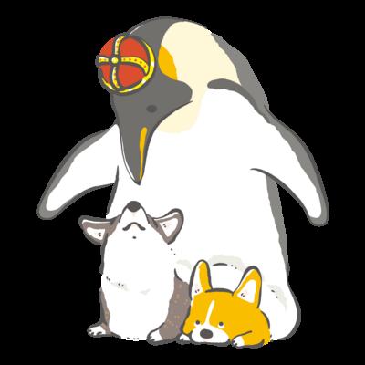 皇帝ペンギン とコーギー