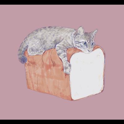 サバトラと高級食パン