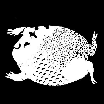 バチェットガエル