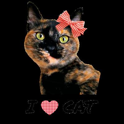 サビ猫☆Tortoiseshell cat