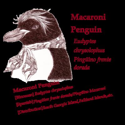 細密画風ペンギンシリーズ