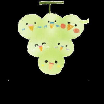 葡萄インコ